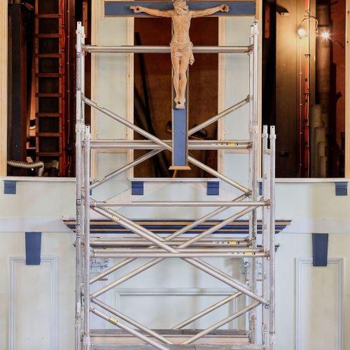 Scaffold On Organ Screen