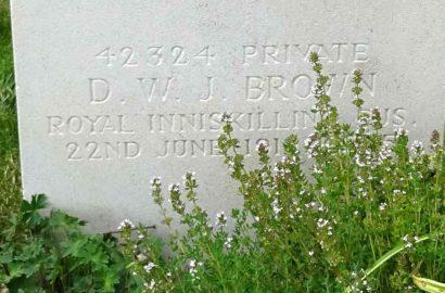 Daniel William James Brown Gravestone